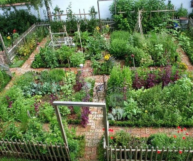 Beautiful urban permaculture garden example. | 1000 in ...