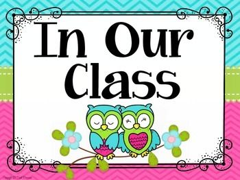 Classroom Rules Display {Owls and Chevron Classroom Decor Theme}