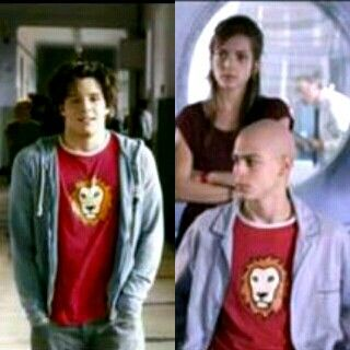 Coincidenze leoniche