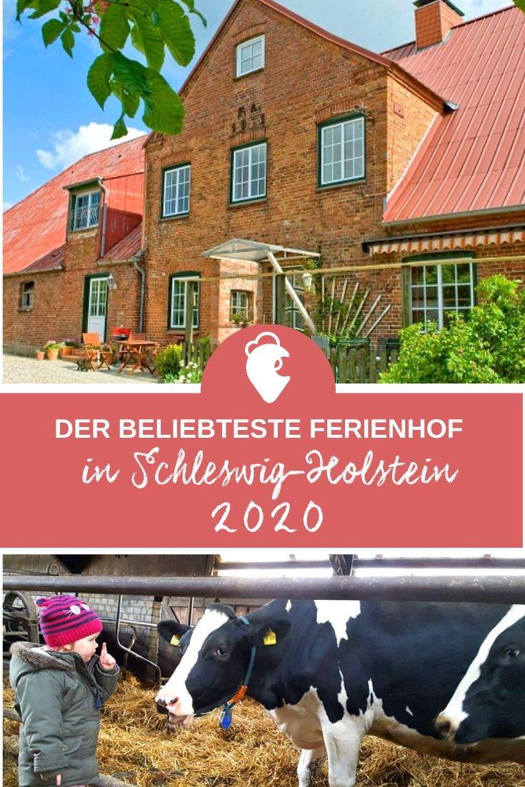 Pssst Wir Verraten Dir Welcher Bauernhof Der Beliebteste Ferienhof 2020 In Schleswig Holstein Geworden Ist Landre Bauernhof Nordsee Reisen Urlaub Am Meer
