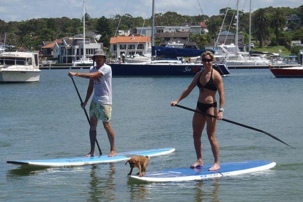 Bondi Standup Paddleboard School, Beaches and Bays of Sydney