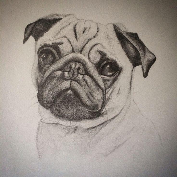 Картинка брайана мопса карандашом