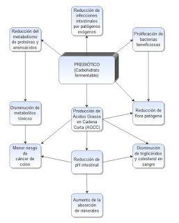 APTN-COFENAT: PREBIOTICOS Y PROBIOTICOS. QUE SON Y PARA QUE SIRV...