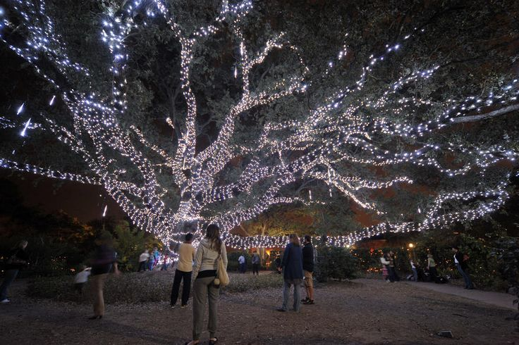 See this year's dreamy destinations that define Christmas in the South.