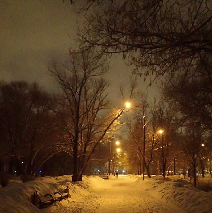 #Russia #Moscow #walk #winter  #Россия #Москва #пейзаж #зимнийпейзаж