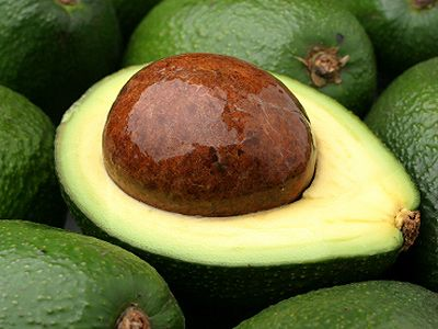 Analysis of the fatty acids contained in avocado oil - also known ...
