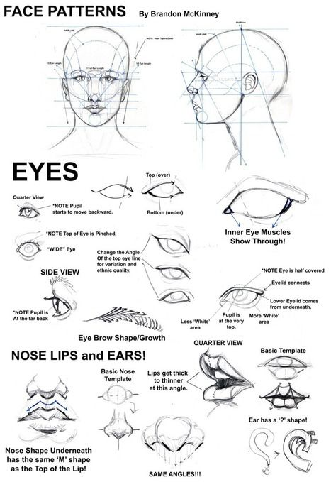 Face Patterns Drawing Reference   Drawing References and Resources   Scoop.it