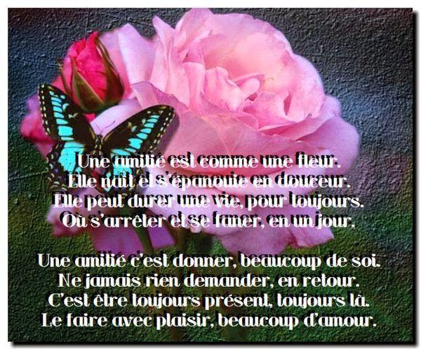 épinglé Par Helene Papillon Sur Amitié Citations Poeme