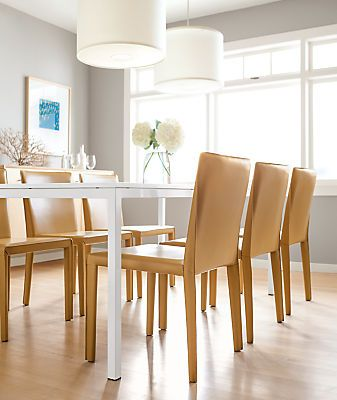 Contemporary Chairs For Dining Room Mesmerizing 176 Best Dining Room Ideas Images On Pinterest  Dining Room Inspiration