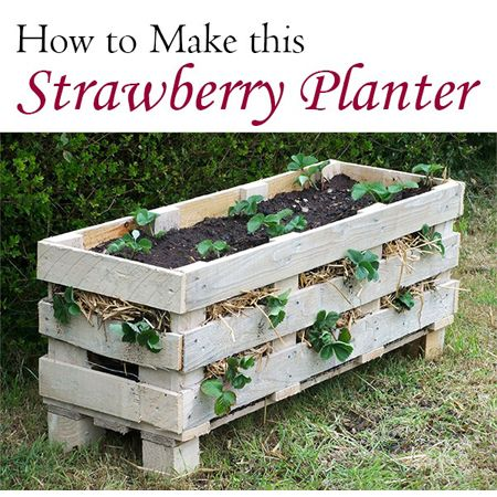 Perfect Pallet Project 8 strawberry planter