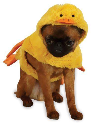 8 best Fairy Tale Pets images on Pinterest | Animal ...