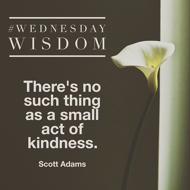 489 Best Kindness Quotes Images On Pinterest