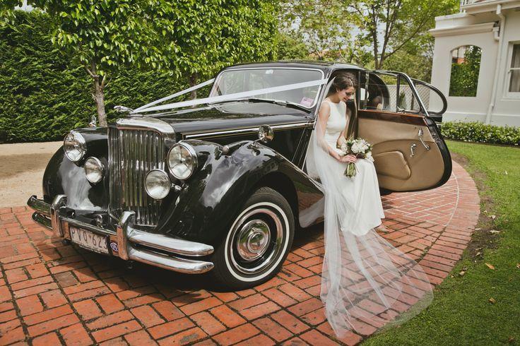 Marvelous Brideu0027s Cars : 1951 Jaguar At Quat Quatta   Wedding Lande