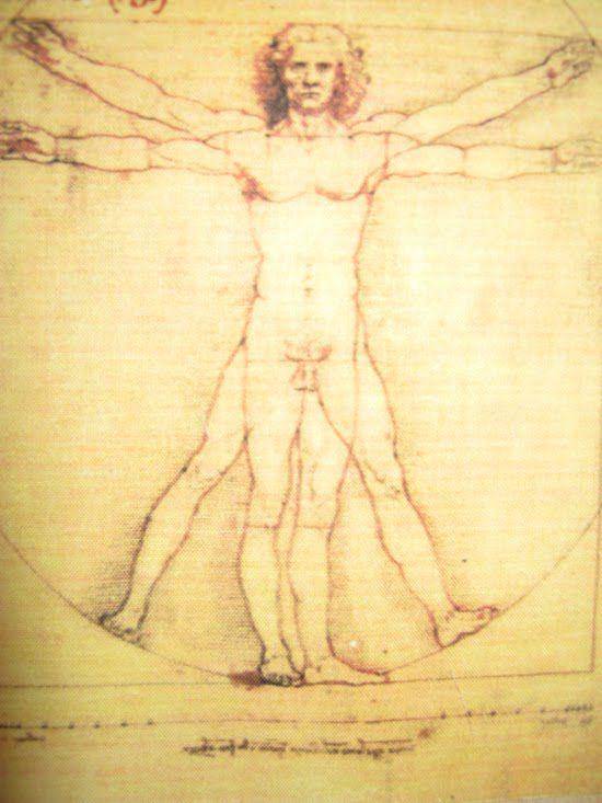 Modell Leonardo da Vinci makett 1. modello, model, modell, maquettes, mo...
