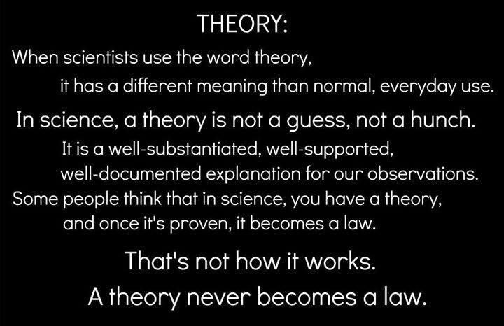 Scientific theory does not mean what you think it means, religinuts.