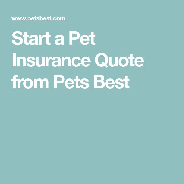Start a Pet Insurance Quote from Pets Best