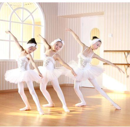 nieuwe 2014 pailletten veer witte zwanenmeer ballet kostuum tutu voor meisjes in…