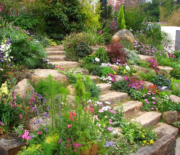 40 Drought Tolerant Plant Ideas for your Homestead's Landscape | DIY Creative Indoor and Outdoor Garden by Pioneer Settler http://pioneersettler.com/drought-tolerant-plant-ideas-homestead-landscape/