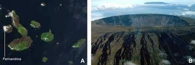 Štítové vulkány Galapág: družicový pohled na řetěz sopečných ostrovů (A), budovaných podobně jako Havajské ostrovy aktivitou horké skvrny, .