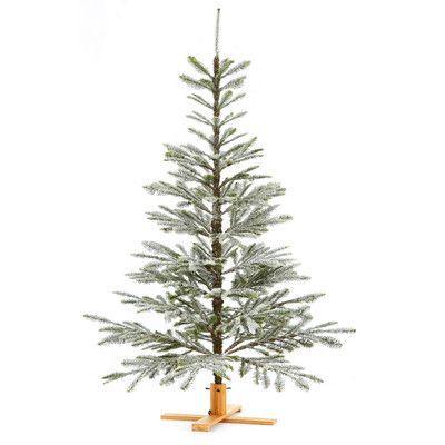 Sage & Co. Noble Fir Snow Tree & Reviews | Wayfair Supply $169 6ft