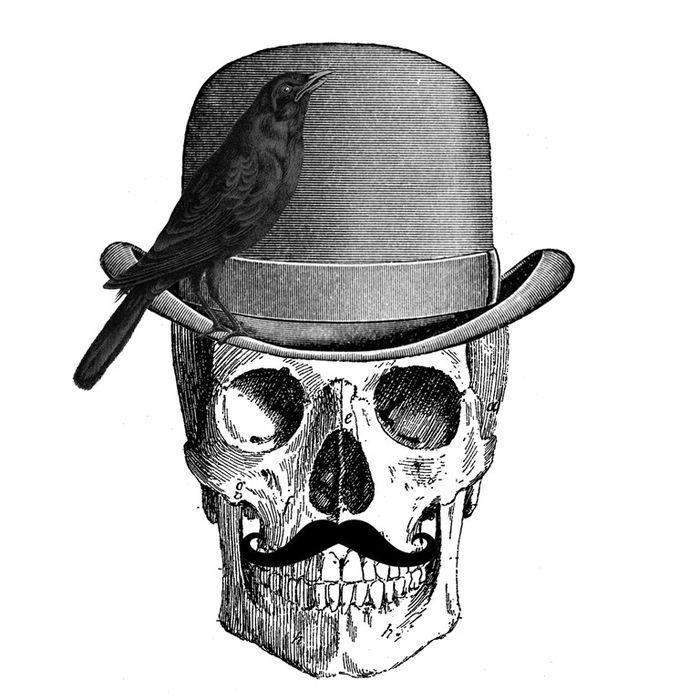 вам труд картинки черепа в шляпе куркова продолжает восхищать