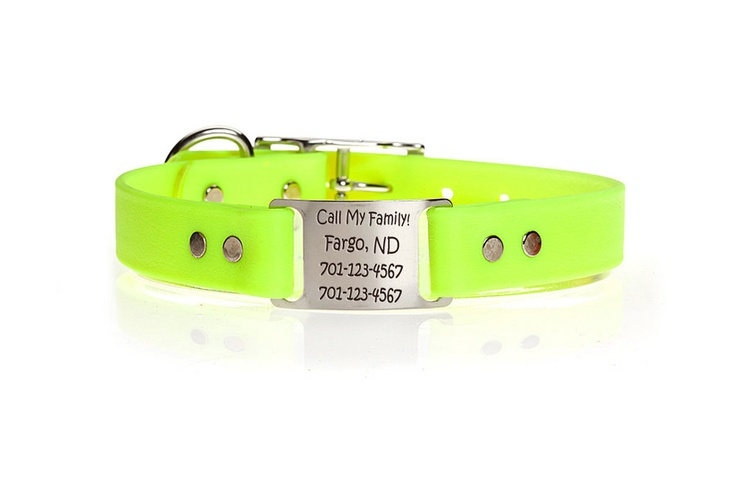 Canada Personalized Laser Dog Collars