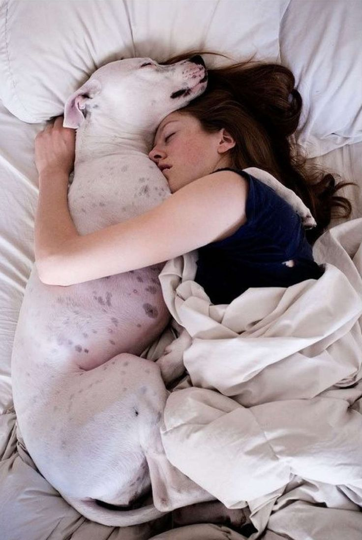 chica durmiendo con un perro gigante