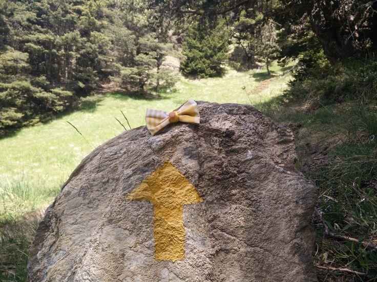 Papillon giallo a quadretti di Papilau su Etsy