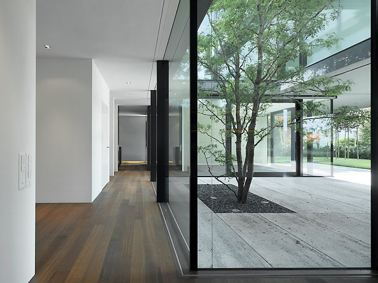 Tree enlighting the interior of this house by Swiss architects Wild Bär Heule.