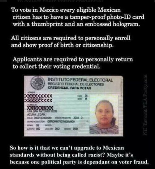 Checked on this and yes they do! In Federal elections. Why shouldn't we? Oh, and they have a wall too. Why shouldn't we?