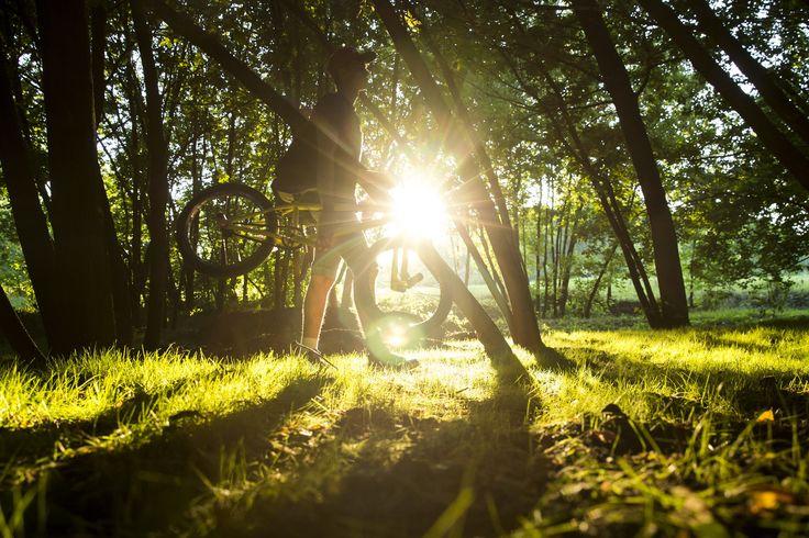 Summer BMX Pavel Dolenko