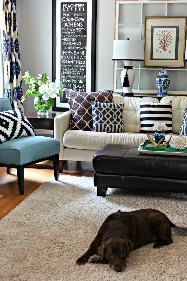 Dog at home 542 best Indigo themed