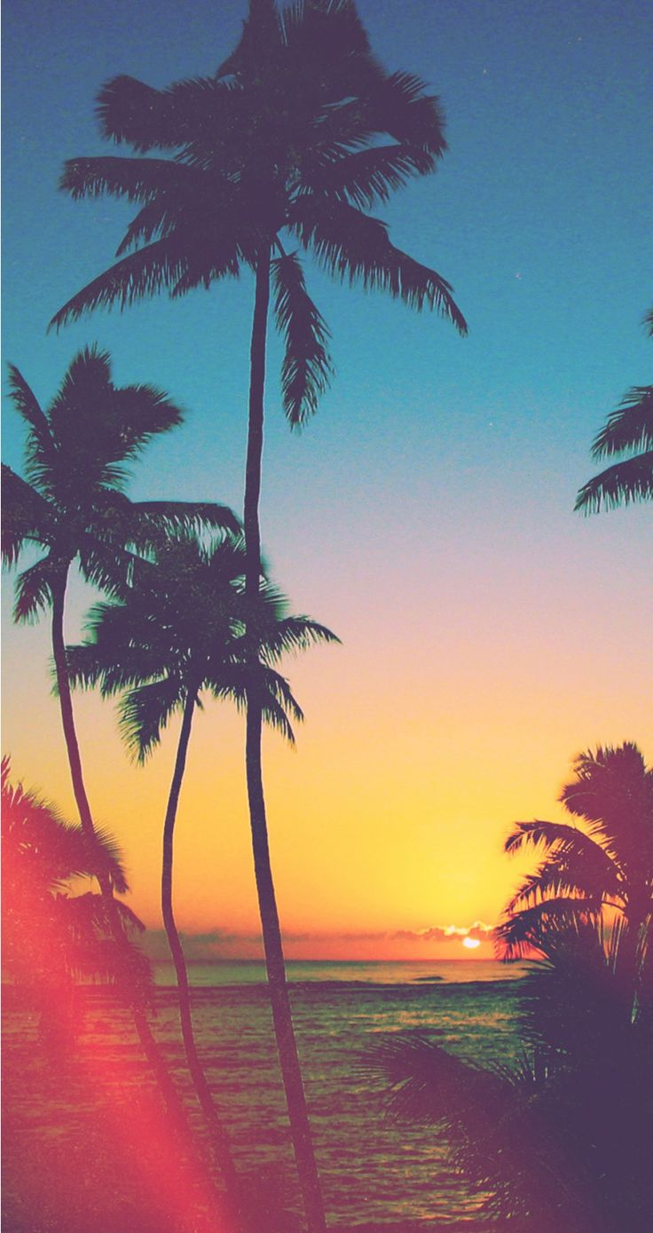 Wallpaper iphone wallpaper - Tropical Beach Tap To See Wonderful Beach Sea Ocean Wallpaper For Iphone 7