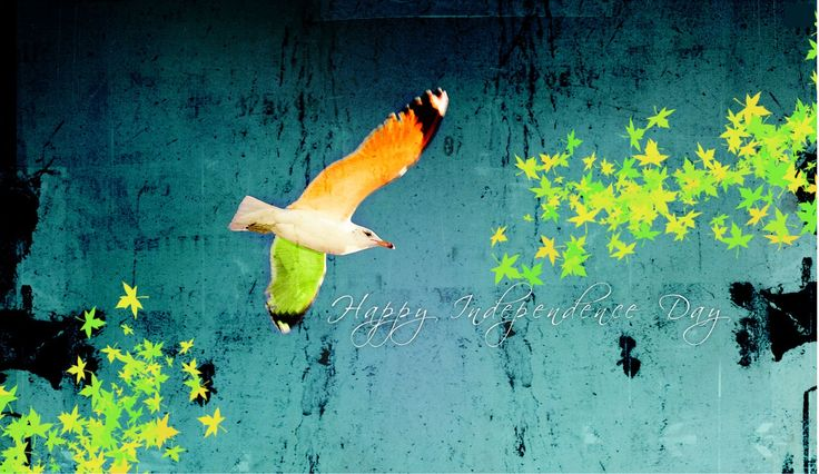Special Wallpapers of Indian Independence Day 2013_8
