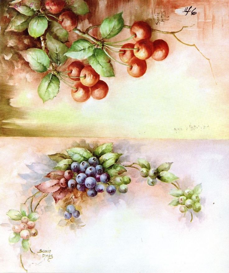 Blueberries and Cherries #46 by Sonie Ames China Painting Study 1971