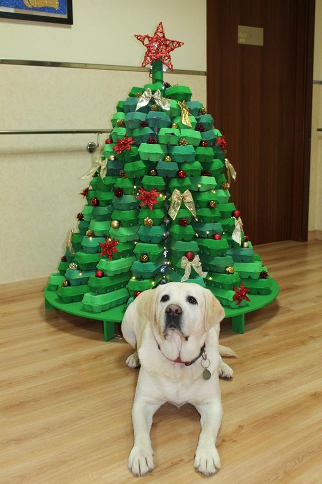 Eco Friendly Christmas 444 best Árboles de navidad eco/eco-friendly christmas trees