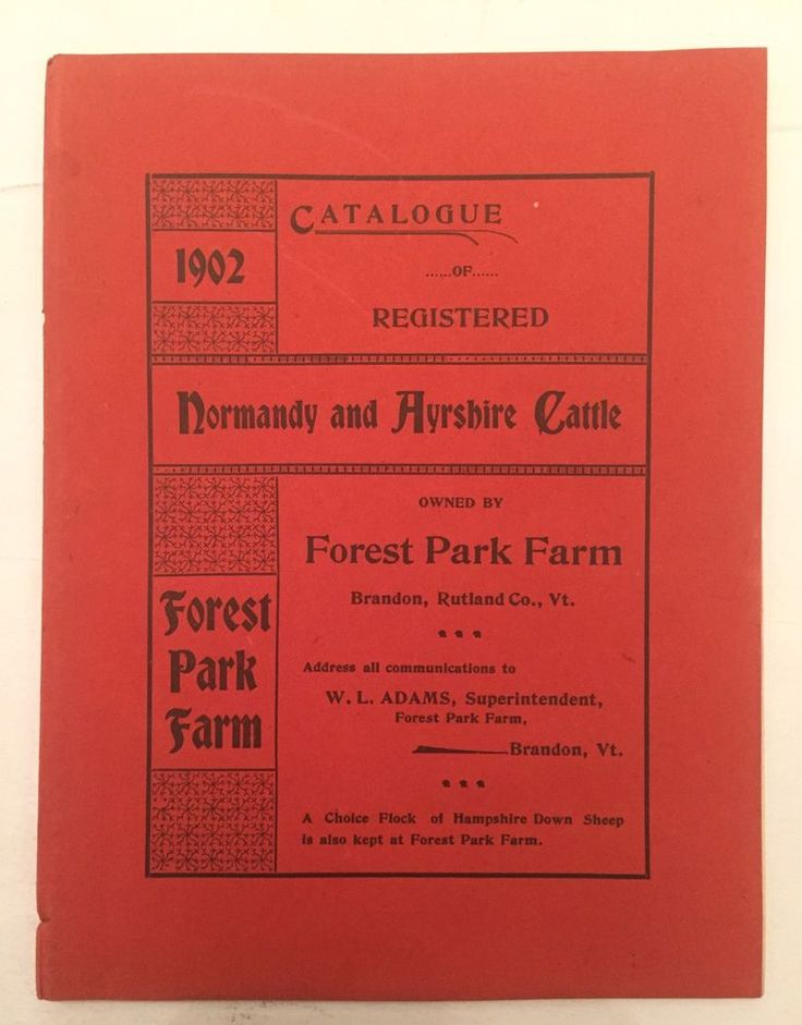 Vintage 1902 Catalog Normandy An Ayreshire Cattle Forest Park Farm Brandon VT   | eBay
