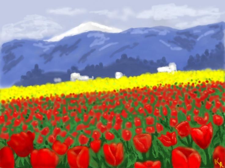 Tulip Field in Washington State=) By Kinda