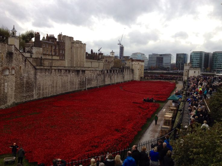 """November 2014 Tower of London """"Blood Swept Land and Seas"""" WWI Centenary Memorial"""