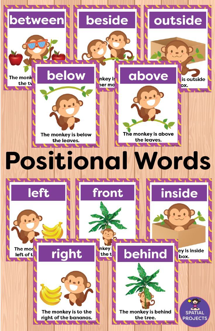 Check Out This Spatial Concepts Resource It Is Filled With Positional Words Activitie Kindergarten Worksheets Positional Words Activities Kindergarten Posters [ 1136 x 736 Pixel ]