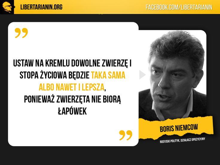 #niemcow #rosja #opozycja #polityka #putin #kreml #moskwa #malpa #polityka #gospodarka #korupcja #zwierzeta #zwierze