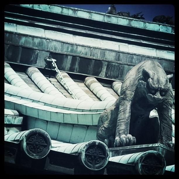 湯島聖堂 私の一番好きな狛犬