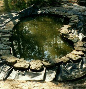 How to build a pond...step by step. Excellent site for ponding.