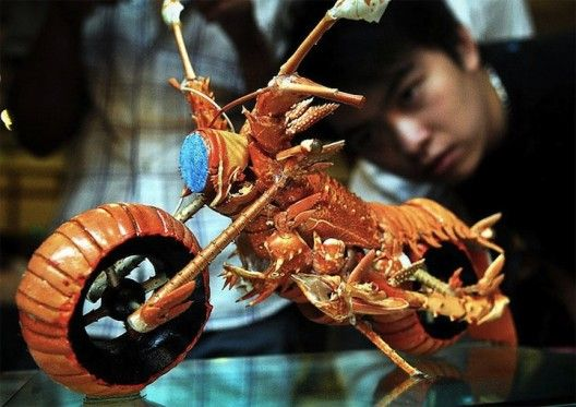 Motorcycle made out of lobster shells was made by Taiwanese chef and food artist Huang Mingbo at a seminar on cooking art in Fuzhou, southeast China's Fujian province.: Lobsters Motorcycles, Huang Mingbo, Lobsters Motorbikes, Lobsters Shells, Shells Motorcycles, Motorcycles Art, Food Carvings, Food Art, Foodart