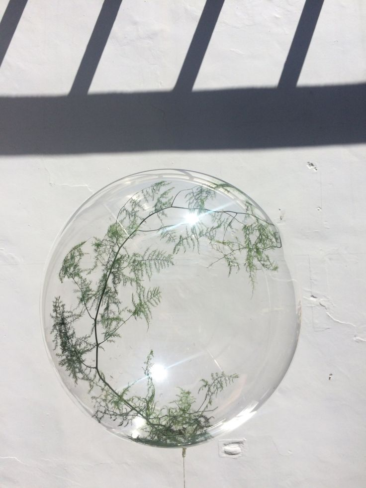 Stunning fern filled bubble. Beautiful unique wedding decor by TheBalloonStudio on Etsy