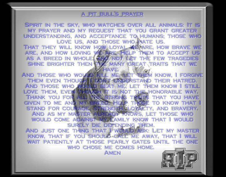 Mary sandefur uploaded this image to 'Dog stuff'.  See the album on Photobucket.