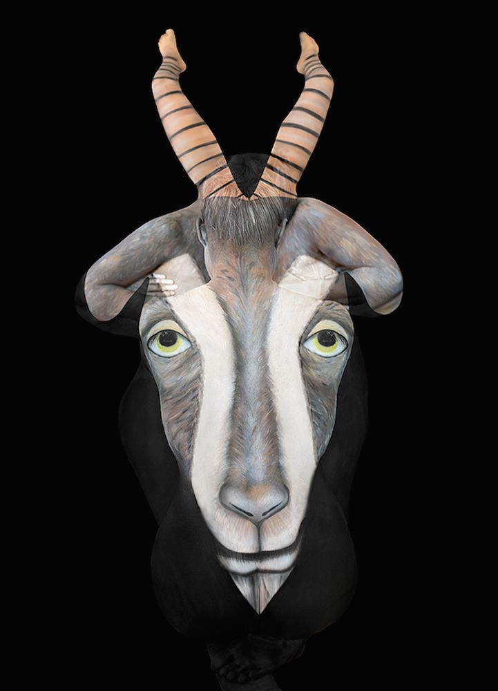 Best Incredible Clever Face Paint Body Art Images On - Amazing body art transforms people animals human organs