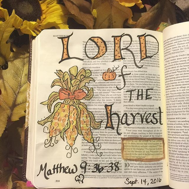 The harvest is plentiful,but the laborers are few; therefore pray earnestly to the Lord of the harvest to send out laborers into his harvest. Matthew 9:36-38
