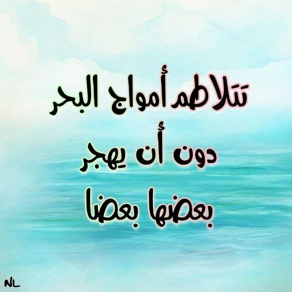 تتلاطم أمواج البحر دون أن يهجر بعضها بعضا Arabic Calligraphy Calligraphy
