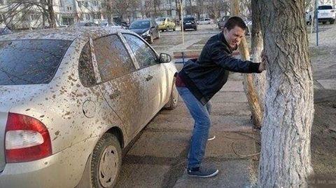 #car #cars #car #carslovers #carsandcoffee #carsofinsta #carsofinstagram #igcar #igcars #drivers #drive #driver #drive2 #driving #drivin #авто #автомобили #тачка #тачки #машина #машины #зарулем #водила #водитель #езда #гонка #гонки #rideordiechick